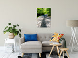 Summer Shadows Botanical / Nature Photo Fine Art Canvas & Unframed Wall Art Prints - PIPAFINEART