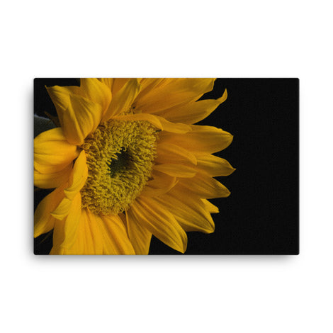 Sunflower from Left Floral Nature Canvas Wall Art Prints