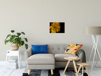 "Sunflower from Left Nature / Floral Photo Fine Art Canvas Wall Art Prints 16"" x 20"" / Fine Art Canvas - PIPAFINEART"