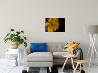 "Sunflower from Left Nature / Floral Photo Fine Art Canvas Wall Art Prints 20"" x 30"" / Fine Art Canvas - PIPAFINEART"