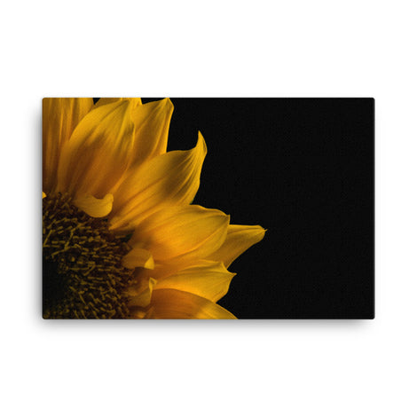 Sunflower in Corner Floral Nature Canvas Wall Art Prints