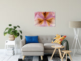 "Symmetry of Nature Nature / Floral Photo Fine Art Canvas Wall Art Prints 24"" x 36"" - PIPAFINEART"