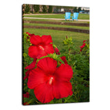 The Riverfront 2 Nature / Floral Photo Fine Art Canvas Wall Art Prints  - PIPAFINEART