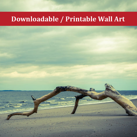 The Cove Landscape Photo DIY Wall Decor Instant Download Print - Printable