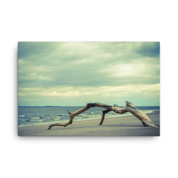 The Cove Coastal Landscape Canvas Wall Art Prints  - PIPAFINEART