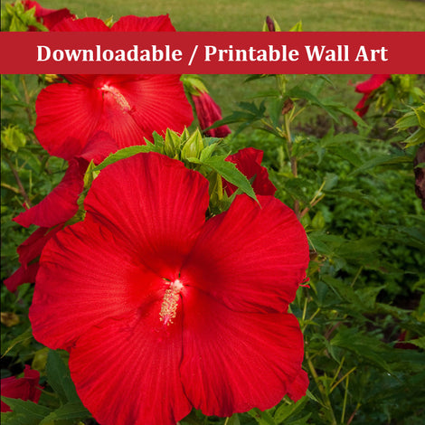 The Riverfront 2 Floral Nature Photo DIY Wall Decor Instant Download Print - Printable
