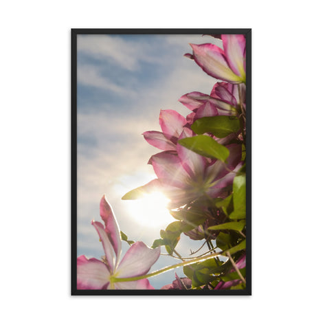Towering Clematis Floral Nature Photo Framed Wall Art Print