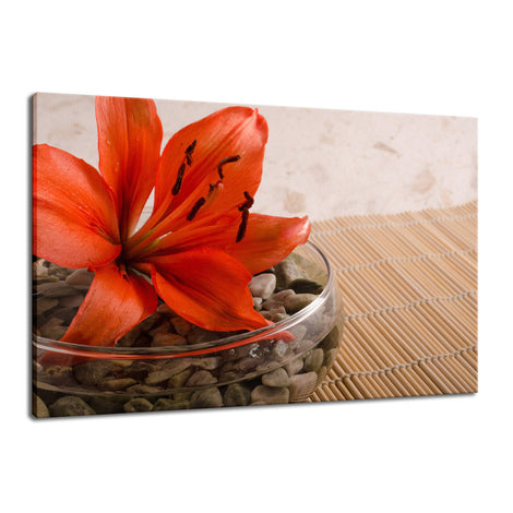 Tranquil Lily Nature / Floral Photo Fine Art Canvas Wall Art Prints