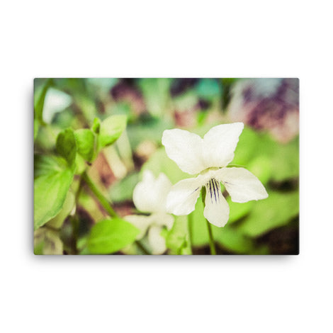 Tranquil China Violet Floral Nature Canvas Wall Art Prints