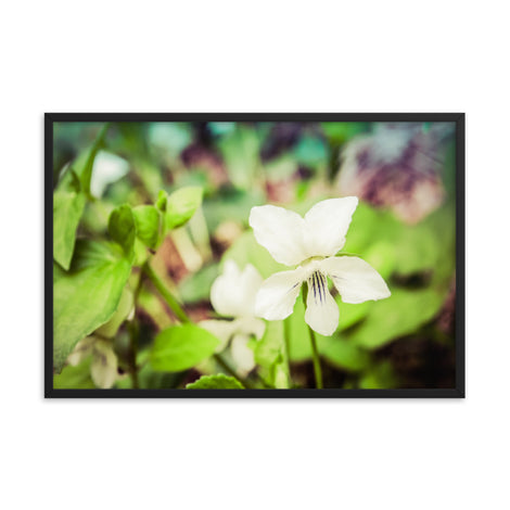 Tranquil China Violet Floral Nature Photo Framed Wall Art Print