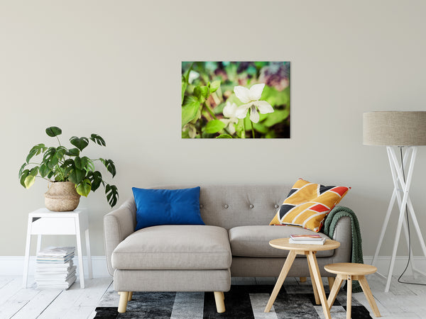 "Tranquil China Violet Nature / Floral Photo Fine Art Canvas Wall Art Prints 24"" x 36"" - PIPAFINEART"