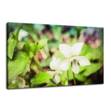 Tranquil China Violet Nature / Floral Photo Fine Art Canvas Wall Art Prints