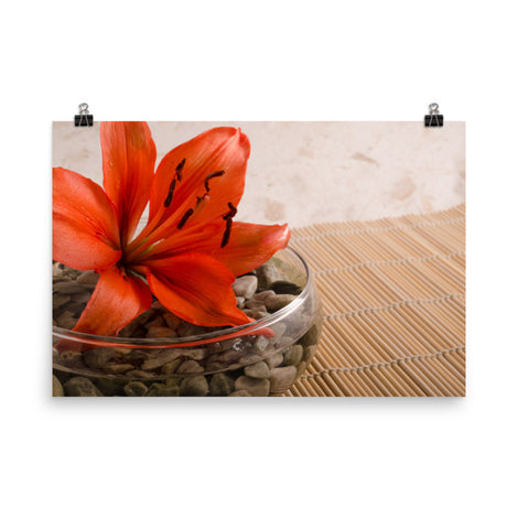 Tranquil Lily Floral Nature Photo Loose Unframed Wall Art Prints