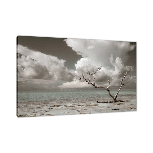 Wanderlust Aged and Colorized Coastal Landscape Photo Fine Art Canvas Prints