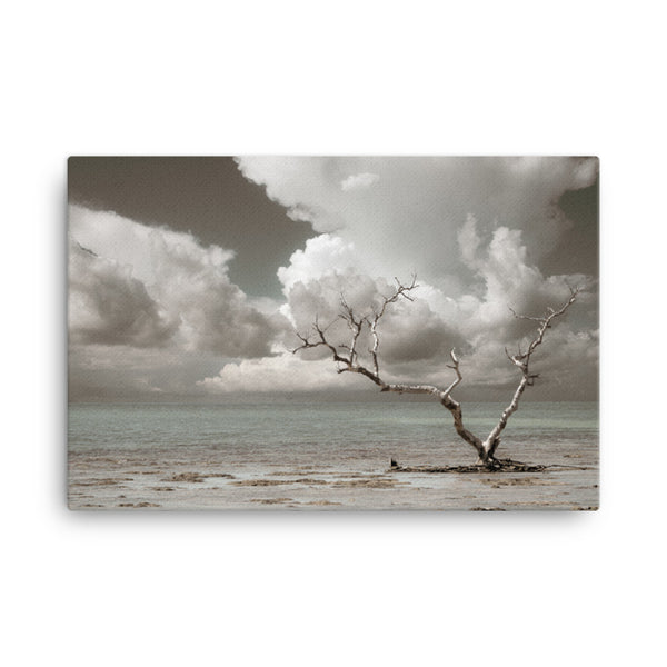 Wanderlust Aged and Colorized Coastal Landscape Photo Canvas Wall Art Prints  - PIPAFINEART