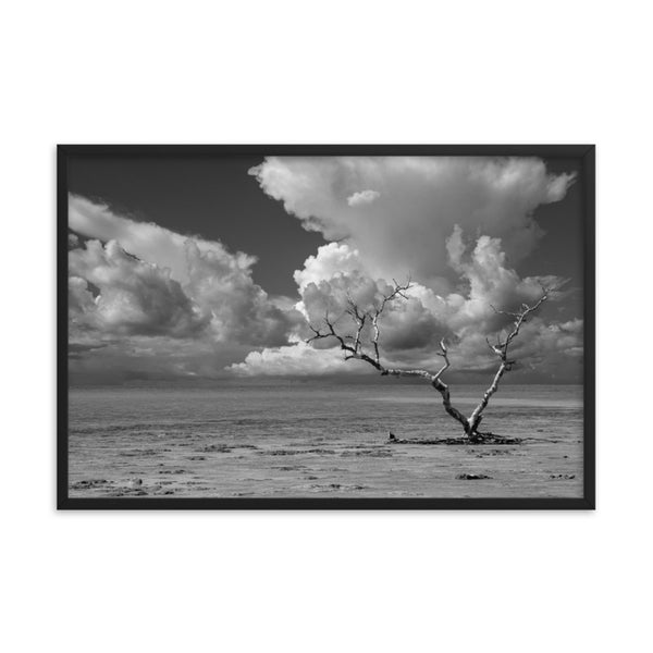 Wanderlust High Contrast Black and White Coastal Landscape Photo Framed Wall Art Print  - PIPAFINEART