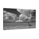 Wanderlust High Contrast Black and White Coastal Landscape Photo Fine Art Canvas Prints