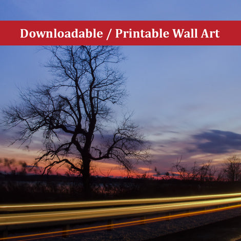 Wicked Tree Landscape Photo DIY Wall Decor Instant Download Print - Printable