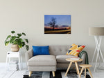 Rural Landscape Photo Wicked Tree Fine Art Canvas & Wall Art Prints Unframed