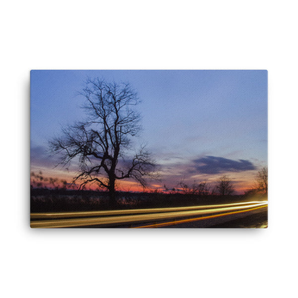 Wicked Tree Rural Landscape Canvas Wall Art Prints  - PIPAFINEART