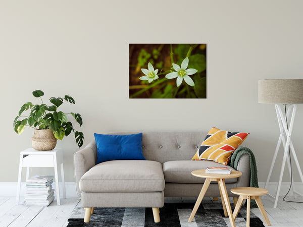 Floral Nature Photograph Wild Beauty - Fine Art Canvas - Home Decor Unframed Wall Art Prints - PIPAFINEART