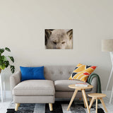 "Wolf Eyes Animal / Wildlife Photograph Fine Art Canvas & Unframed Wall Art Prints 20"" x 24"" / Canvas Fine Art - PIPAFINEART"