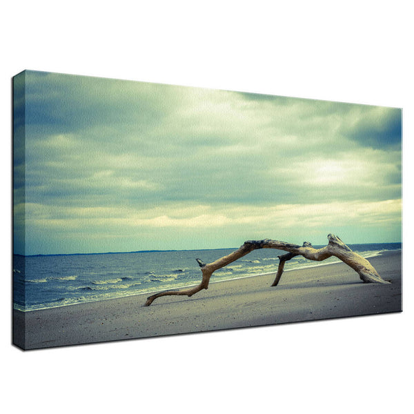Beach Art Landscape Photo - Driftwood in the Beach Cove - Colorized - Fine Art Canvas Gallery Wrap - Home Decor Unframed Wall Art Prints