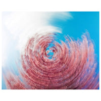 Abstract Photography Swirling Tree - Fine Art Canvas - Home Decor Wall Art Prints Unframed - PIPAFINEART