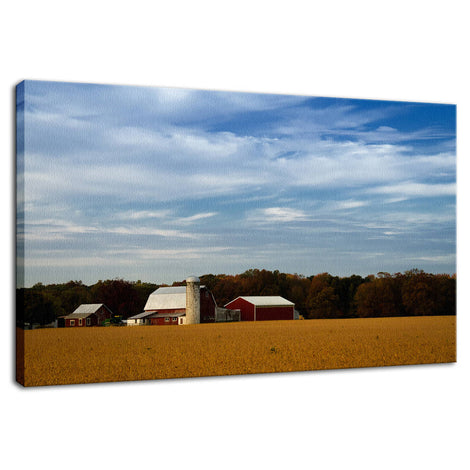 Red Barn in Golden Field Rural Landscape Photo Fine Art Canvas Wall Art Prints
