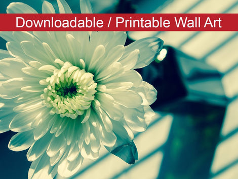 Melancholy Flower Floral Nature Photo DIY Wall Decor Instant Download Print - Printable