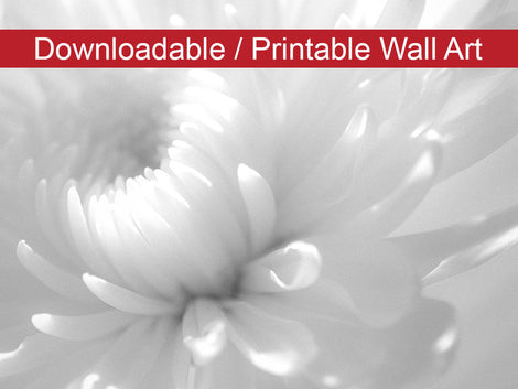 Infrared Flower Floral Nature Photo DIY Wall Decor Instant Download Print - Printable
