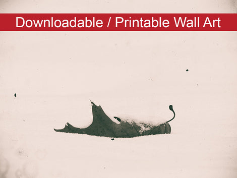 Bleak Winter Botanical Nature Photo DIY Wall Decor Instant Download Print - Printable