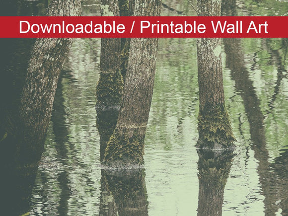 Digital Wall Art, Downloadable Print, Botanical Nature Photo Early Spring Reflections on the Marsh - Wall Decor Instant - Printable