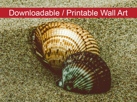Dreamy Beach Seashells Colorized Coastal Nature Photo DIY Wall Decor Instant Download Print - Printable