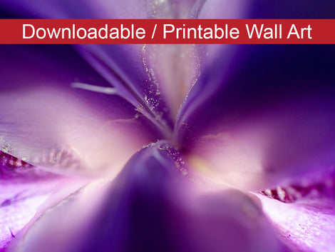 Iris Center Petals Floral Nature Photo DIY Wall Decor Instant Download Print - Printable
