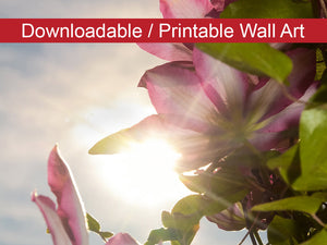 Digital Wall Art, Downloadable Prints, Floral Nature Photograph Towering Clematis - Flower Wall Decor Instant Download Print - Printable