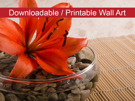 Tranquil Lily Floral Nature Photo DIY Wall Decor Instant Download Print - Printable