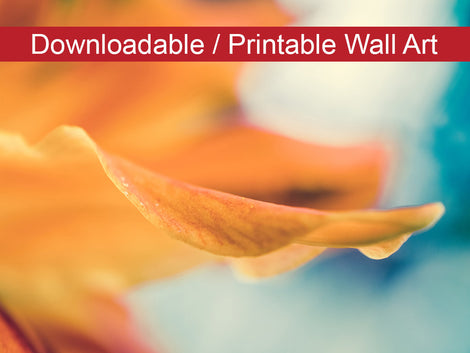 Serene Petals of Life Floral Nature Photo DIY Wall Decor Instant Download Print - Printable
