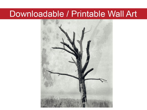 Rotting Away Alone Botanical Nature Photo DIY Wall Decor Instant Download Print - Printable