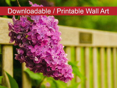 Park Bench with Lilac Floral Nature Photo DIY Wall Decor Instant Download Print - Printable
