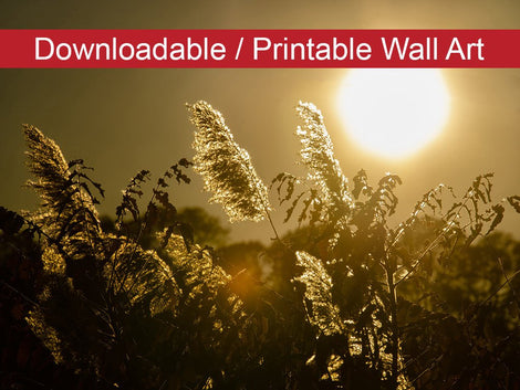 Golden Marsh Weeds Botanical Nature Photo DIY Wall Decor Instant Download Print - Printable