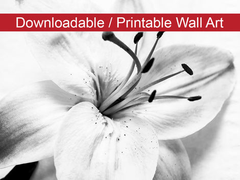 High-key Lily Floral Nature Photo DIY Wall Decor Instant Download Print - Printable