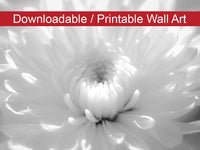 Digital Wall Art, Downloadable Prints, Floral Nature Photograph Infrared Flower 2 - Wall Decor Instant Download Print - Printable - PIPAFINEART