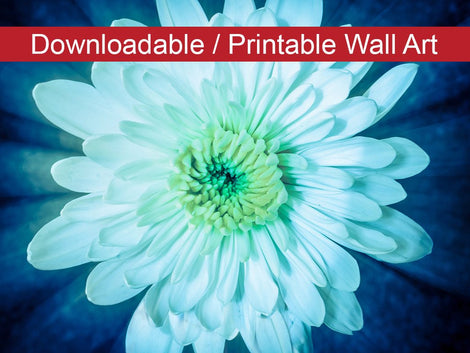 Brilliant Flower Floral Nature Photo DIY Wall Decor Instant Download Print - Printable