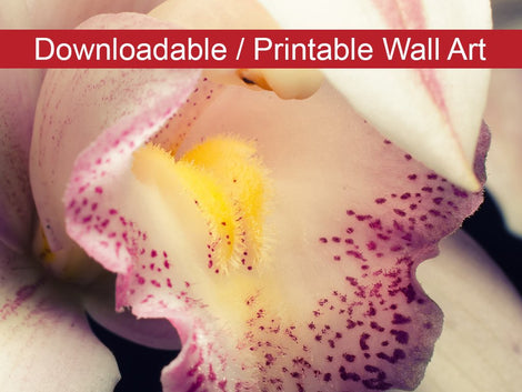 Close-up of Orchid Floral Nature Photo DIY Wall Decor Instant Download Print - Printable