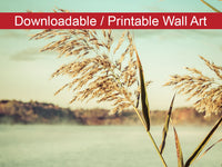 Digital Wall Art, Downloadable Prints, Botanical Nature Photograph Golden Dreams - Wall Decor Instant Download Print - Printable