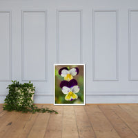 Pretty Little Violets Floral Nature Photo Framed Wall Art Print White / 18×24 - PIPAFINEART