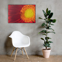 Nature's Beauty Nature Canvas Wall Art Prints 24×36 - PIPAFINEART