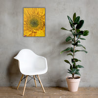 Joyful Color Floral Nature Canvas Wall Art Prints 18×24 - PIPAFINEART
