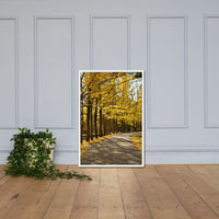 Fall Path Nature Landscape Framed Photo Paper Wall Art Prints - Rural / Farmhouse / Country Style Landscape Scene White / 24×36